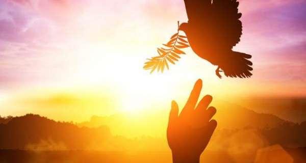 Daha mutlu yaşamak için ruhtaki 40 barış sözü