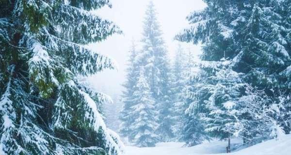 Kar İle İlgili Sözler Ve Alıntılar