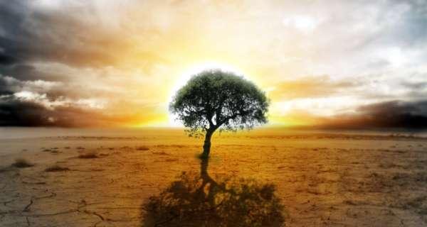 Karışık Kısa Filozof ve Ünlülerden 100 Düşündürücü Söz