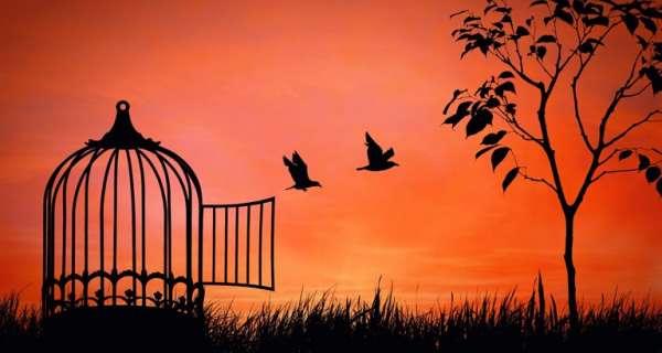 Özgürlük Hakkında 40 İlham Verici Söz