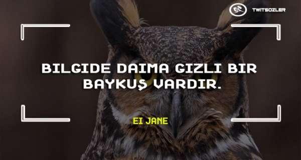 Baykuş ile İlgili Sözler ve Alıntılar