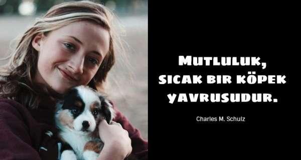 Köpek Alıntıları ve Sadakat Sözleri