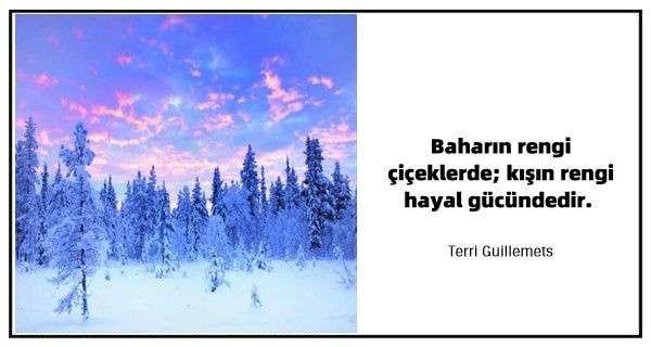 Kış ile İlgili Sözler ve Alıntılar