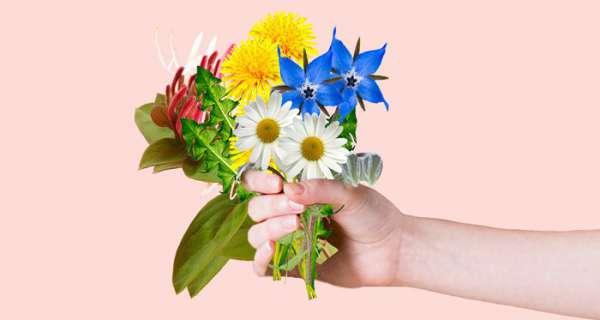 Çiçekler hakkında en iyi sözler ve alıntılar