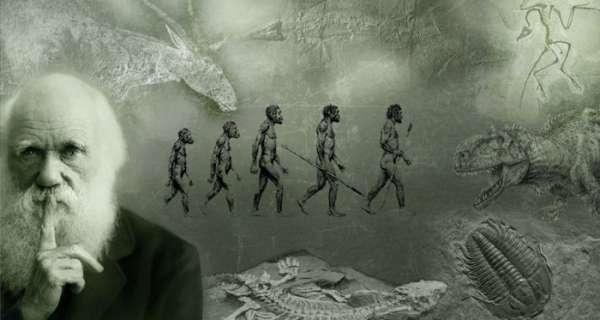 Evrim ile İlgili Sözler ve Alıntılar