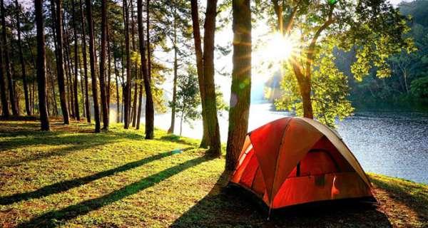 Kamp İle İlgili Sözler ve Alıntılar
